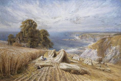 Harvesting on the South Coast, 1869 Giclee Print
