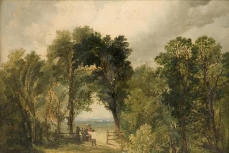 A Woodland Glade Giclee Print