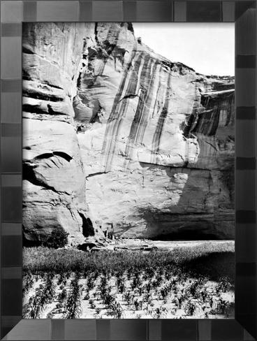 Navajo Farming Stampa giclée con cornice