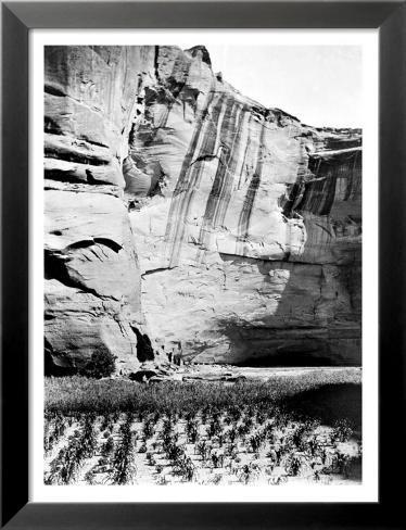Navajo Farming Lamina Framed Art Print