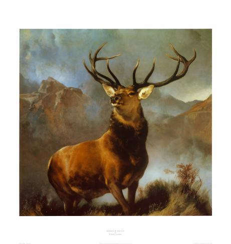 Monarch of the Glen Art Print