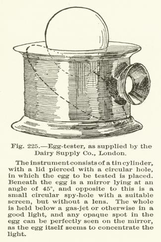 Egg-Tester, as Supplied by the Dairy Supply Company, London Giclée-vedos