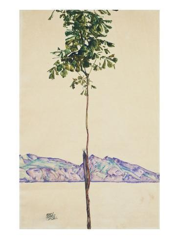 Little Tree (Chestnut Tree at Lake Constance) Giclee Print