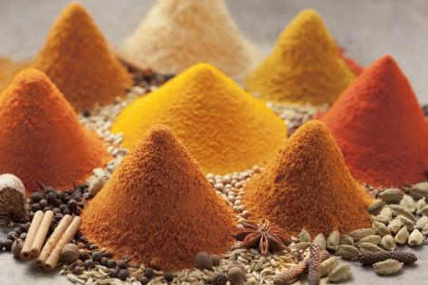 Various Spices Photographic Print