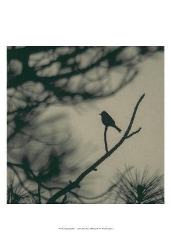 Caligraphy Bird I Art Print