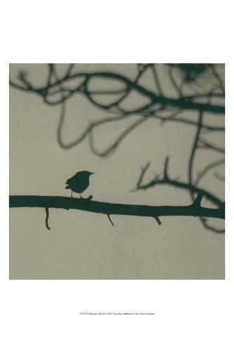 Caligraphy Bird II Art Print