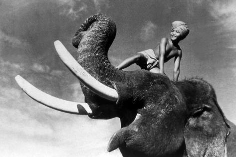 Elephant Boy, De Robertflaherty Et Zoltankorda Avec Sabu, 1937 Photo