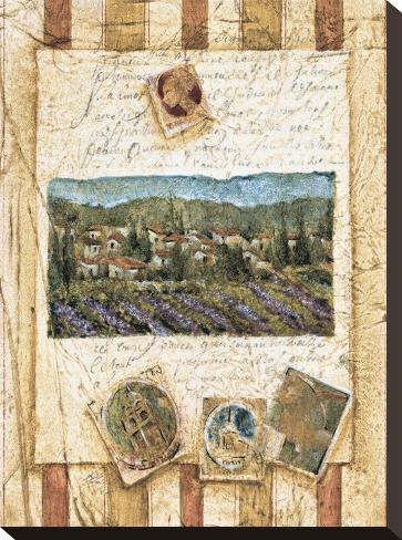 Hillside Vineyard I Stretched Canvas Print
