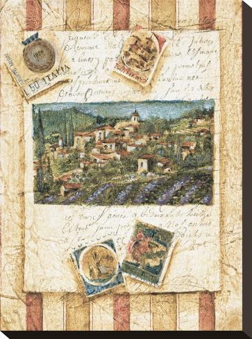 Hillside Vineyard II Stretched Canvas Print