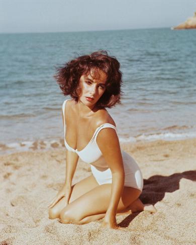 Elizabeth Taylor - Suddenly, Last Summer Photo