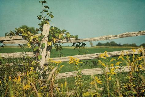 Blissful Country V Crop Art Print