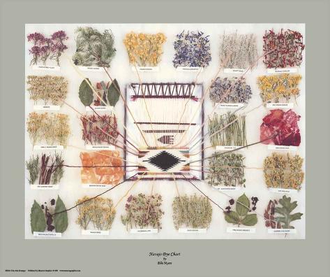 Navajo Dye Chart Art Print