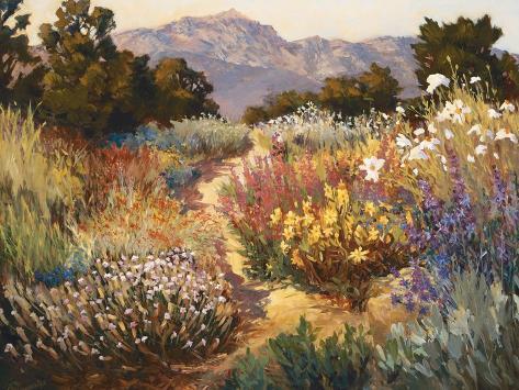 Spring Trails Art Print