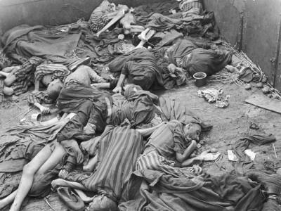 Action Dachau