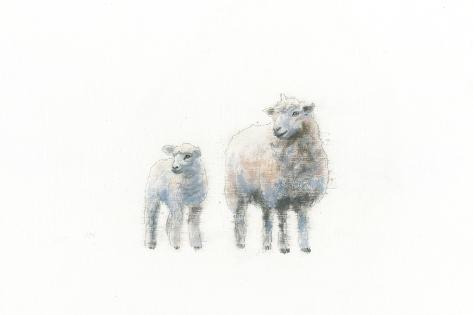 Sheep and Lamb Art Print