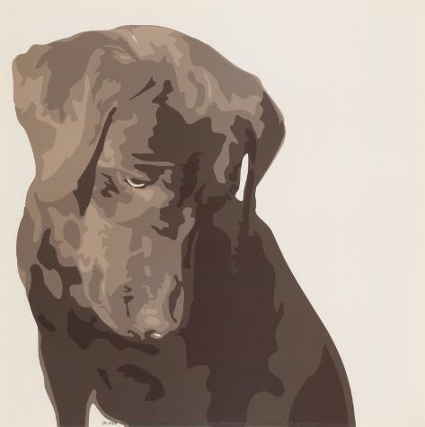 Chocolate Labrador Art Print