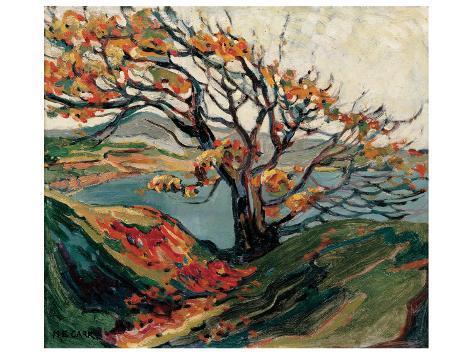 Tree in Autumn Premium Giclee Print