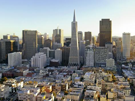 Transamerica Pyramid Building and Downtown from Top of Coit Tower Photographic Print