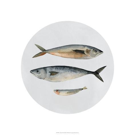 Three Fish I Art Print