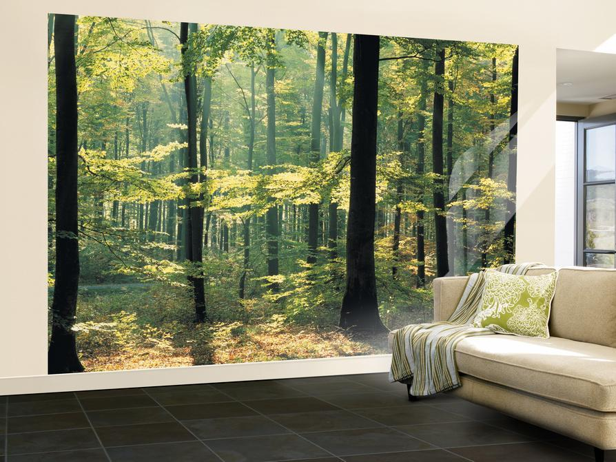 Enchanted Forest Huge Wall Mural Poster Print Wall Mural At