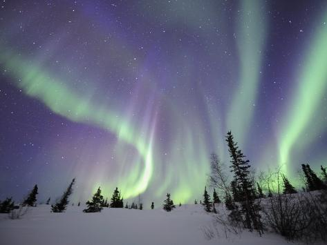 Northern Lights Northwest Territories, March 2008, Canada Photographic Print
