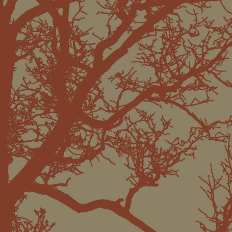 Cinnamon Tree IV Stretched Canvas Print