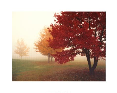 Escape Trees (Red and Yellow Leaves) Mini Poster