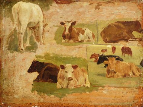 Study of Cows, C.1860 Giclee Print