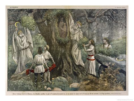 In a Forest Near Chartres France Druids Collect Mistletoe for Ritual Purposes Giclee Print