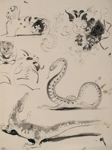 Sheet of Studies: Cat, Crocodile, Snake, Decorative Giclee Print
