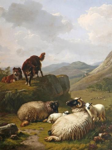 Sheep and Dogs, 1861 Giclee Print