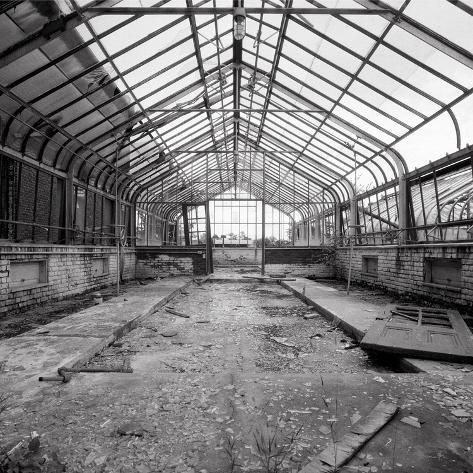 Once a Greenhouse Photographic Print