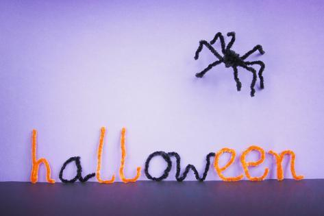 Halloween Toy Spider, Pipe Cleaners. Photographic Print