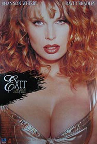 Exit Pôster original