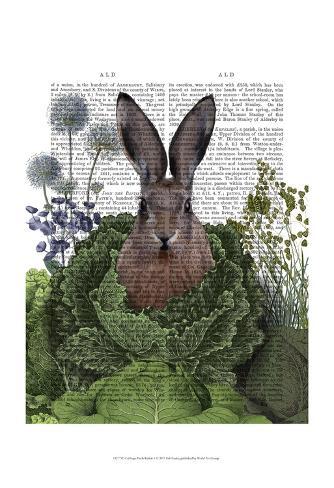 Cabbage Patch Rabbit 1 Art Print