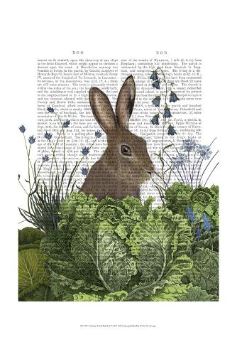 Cabbage Patch Rabbit 2 Art Print