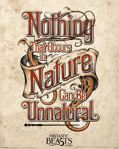 Fantastic Beasts- Nothing Unnatural In Nature Mini Poster