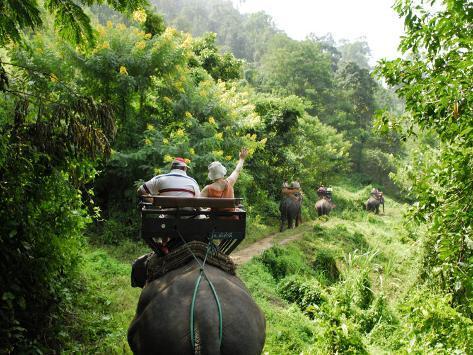 Tourists Riding Elephants Along a Chiang Mai Elephant Camp Trail Photographic Print