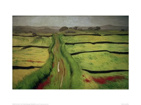 Path in a Meadow Giclee Print