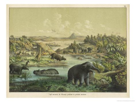 Animals and Plants of the Tertiary Era in Europe Giclee Print