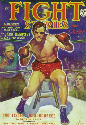 Fight Stories Masterprint