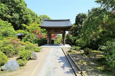 Traditional Japanese Gate Photographic Print