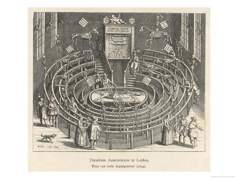 The Anatomy Theatre at Leiden Netherlands Giclee Print