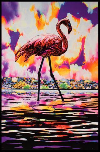 Flamingo Blacklight Poster Mustavalojuliste