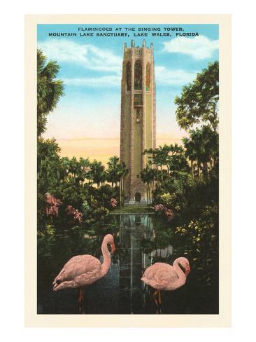 Flamingos, Singing Tower, Lake Wales, Florida Art Print