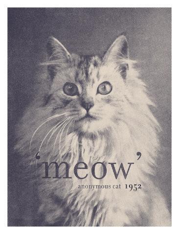 Famous Quote Cat Impressão artística