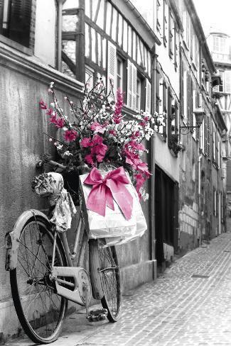 Flores rosas Póster