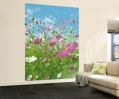 Flower Meadow Huge Wall Mural Art Print Poster Wallpaper Mural