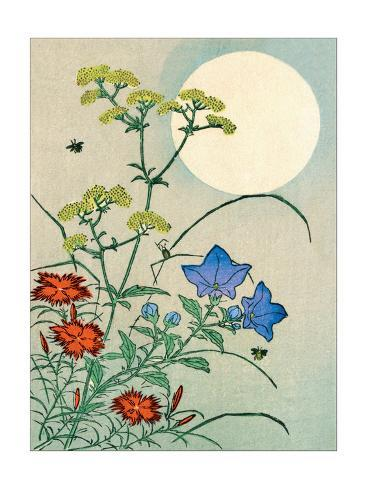 Flowers and Moon Stampa artistica