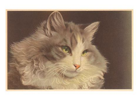 Fluffy Cat Art Print